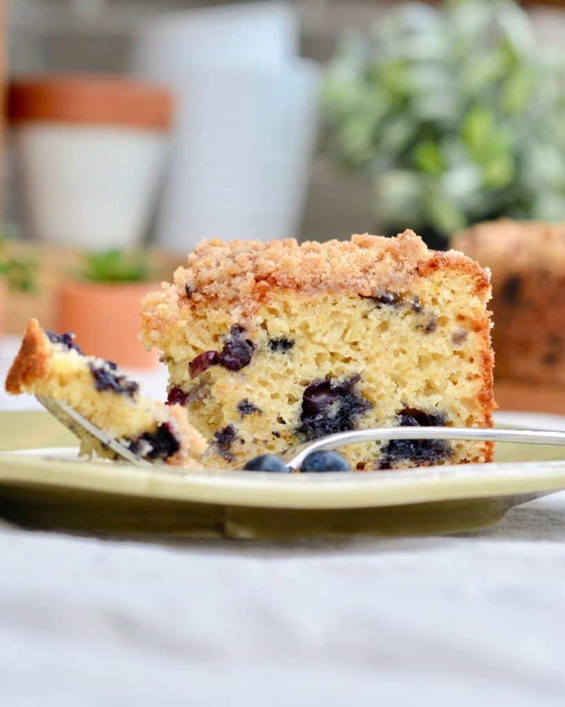 Blueberry Muffin Cake - with a light crumb topping, orange zest and plenty of blueberries. Make it in a spring form pan or a baking dish. So delicious!