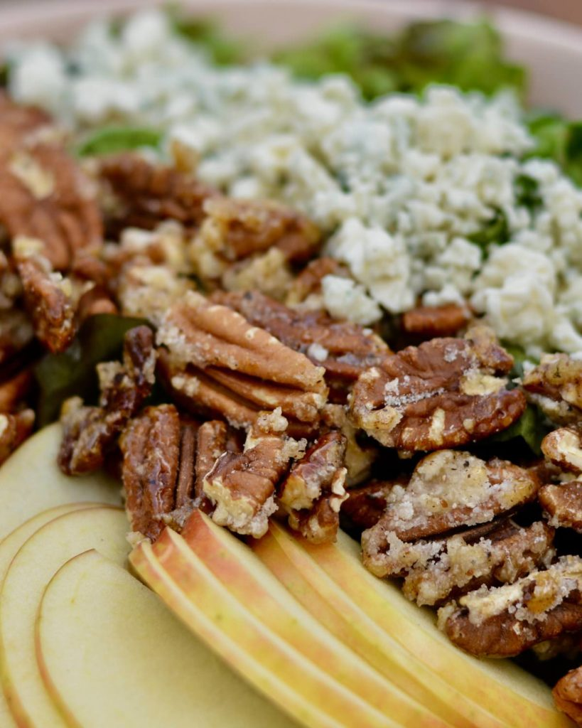 Delicious summer salad with candied spiced pecans, apples, blue cheese and homemade poppy seed dressing. YUM!